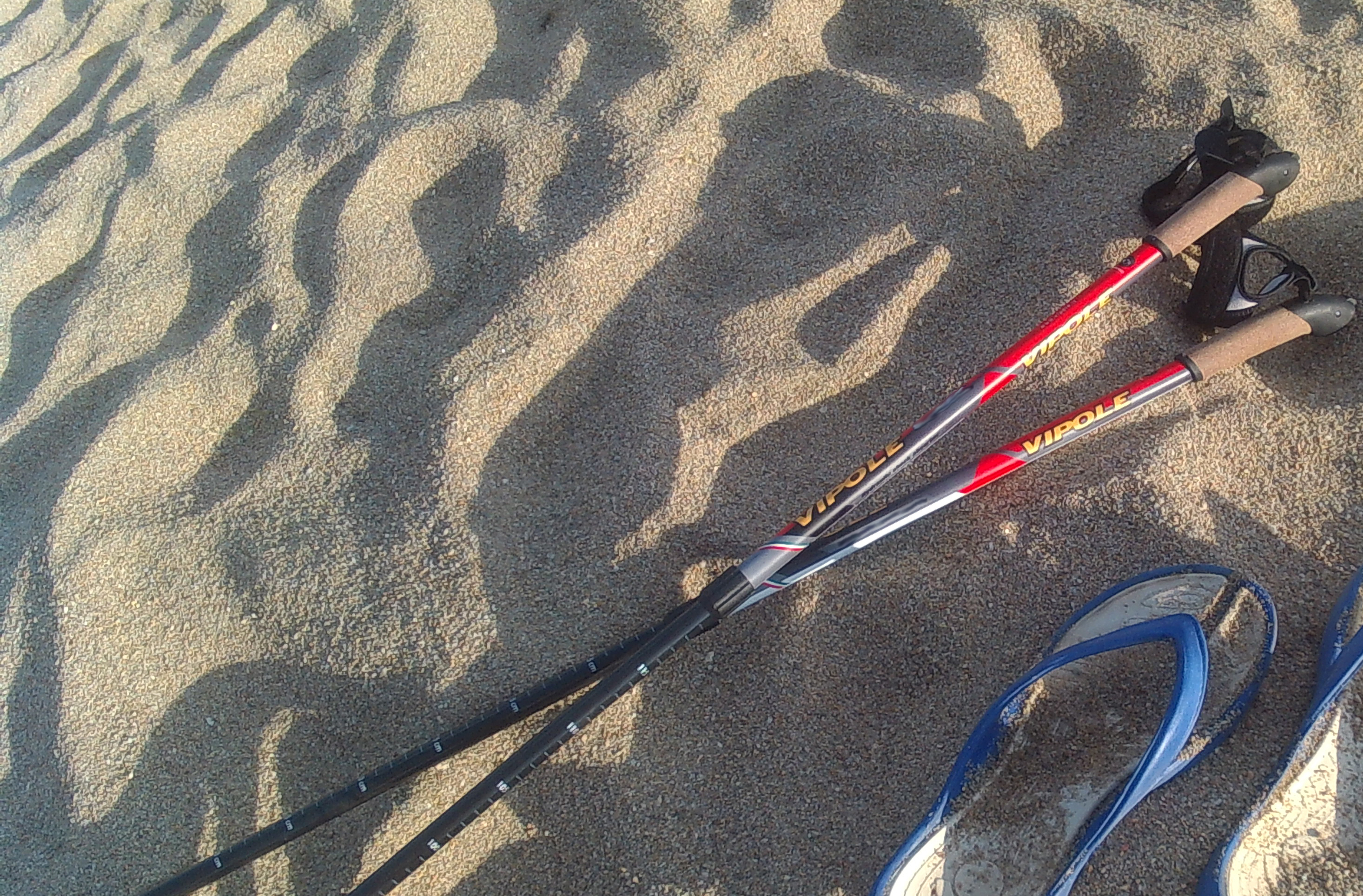 vipole e sabbia